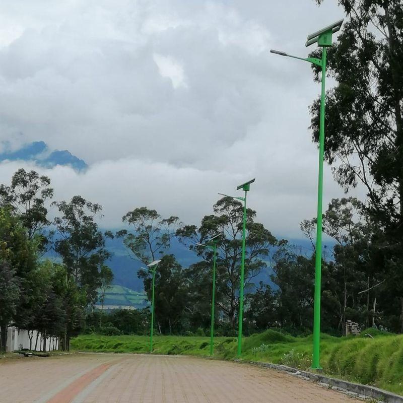 tubos postes importado